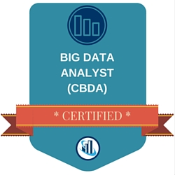 Certified Big Data Analyst (CBDA)™ Training Course